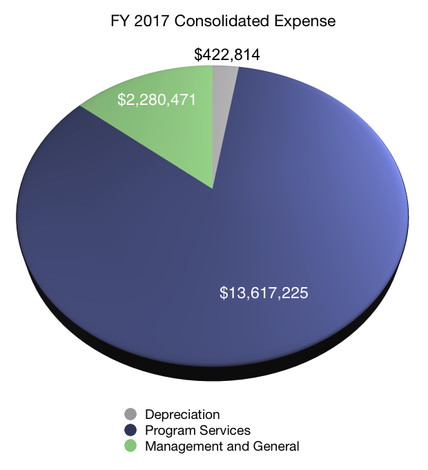 FY 2017 Consolidated Expense